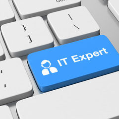Gain Access to Highly specialized IT Experts.